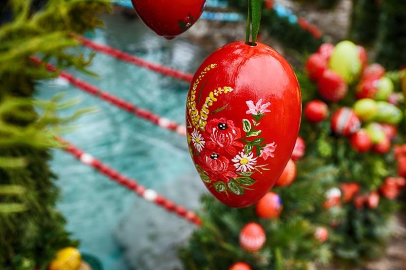 red-easter-egg-flower-65764