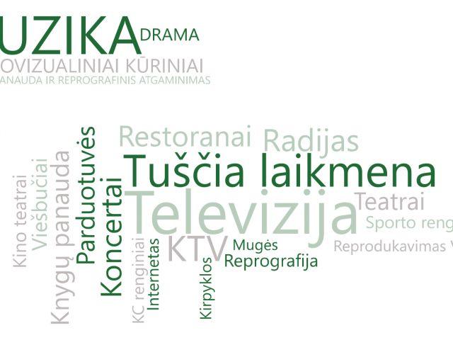 ATASKAITA VNS-SURINKIMAS.pdf